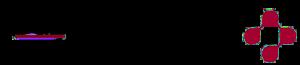 Logo DGZ, Mitglied Zahnarzt Benny Riech